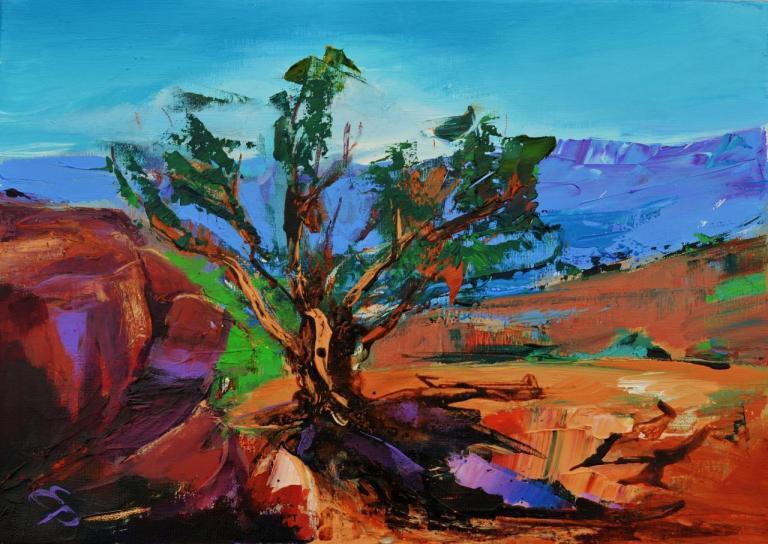 Among red rocks Sedona