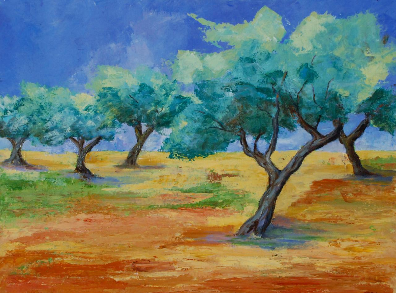 Olives Trees field